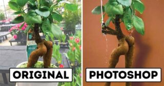 15 Photoshoppers Who Are Really Good With Their Hands!