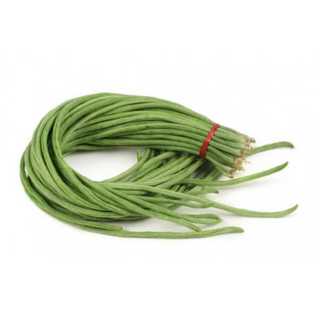 Green Thai Long Beans Seeds 90pcs
